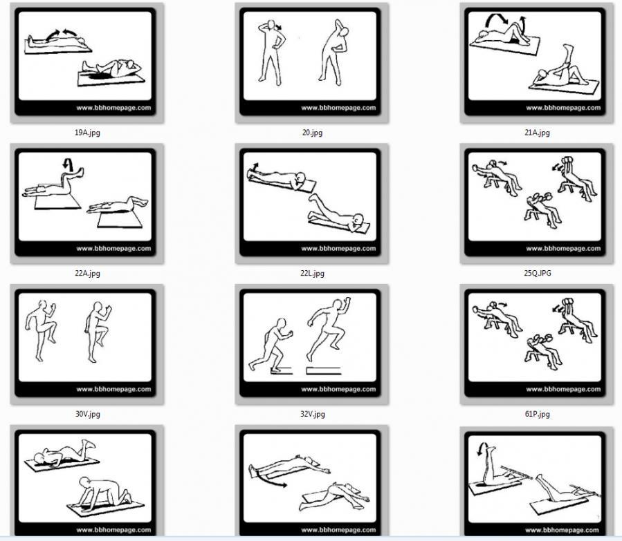 Crea la tua scheda d 39 allenamento con pagina 2 for Crea la tua casa online