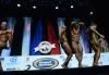 Arnold Amateur 2014 Confronti